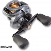 citica-201